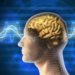 Bärbel Honig - Neurobiologisches Coaching